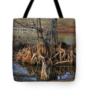 Cypress Knees Tote Bag