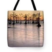 Cypress Sunset Tote Bag