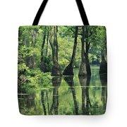 Cypress Trees Cross A Waterway Tote Bag