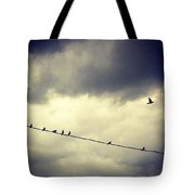 Da Birds Tote Bag by Katie Cupcakes
