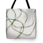 Dacron Fibers Tote Bag