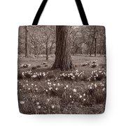 Daffodil Glade Number 2 Bw Tote Bag
