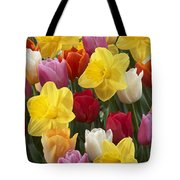 Daffodil Narcissus Sp Lucky Number Tote Bag