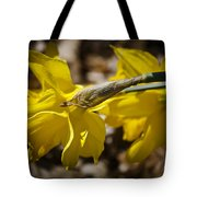 Daffodil Sunshine Tote Bag