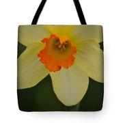 Daffodilicious Tote Bag