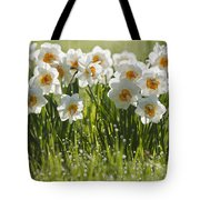 Daffodils In The Dew Covered Grass Tote Bag