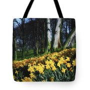 Daffodils Narcissus Flowers In A Forest Tote Bag