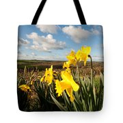 Daffs On Dartmoor Tote Bag
