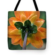 Dahlia 9001 Rearview Tote Bag