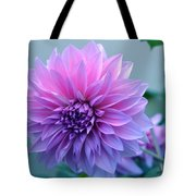 Dahlia Flower2 Tote Bag