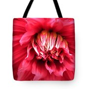 Dahlia In Red Tote Bag