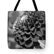 Dahlia Named Pride Of Place Tote Bag