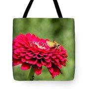 Dahlia's Moth Tote Bag