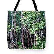 Daintree Forest At Twilight Tote Bag