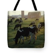 Dairy Cattle Grazing Tote Bag
