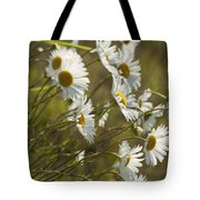 Daisies Blowin In The Wind Tote Bag