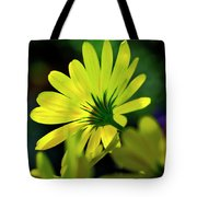 Daisy A Different Look Tote Bag