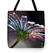 Daisy Abstract With Droplets Tote Bag