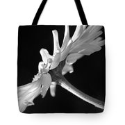 Daisy Flower In Black And White Tote Bag