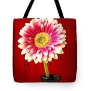 Daisy In Black Vase Tote Bag