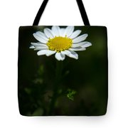 Daisy In Full Growth Tote Bag
