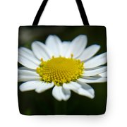Daisy On Green Tote Bag
