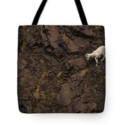 Dall Sheep Were Is Very Adapt Tote Bag