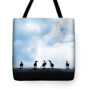 Dam Ducks Tote Bag