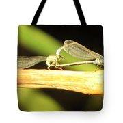 Damselflies In Nature Tote Bag