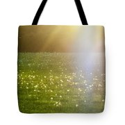 Dandelion And Meadows In Back-light Tote Bag