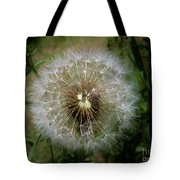 Dandelion Going To Seed Tote Bag