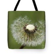 Dandelion Half Gone Tote Bag
