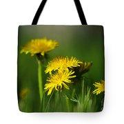Dandelion Magic Tote Bag