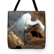 Dandruff Tote Bag