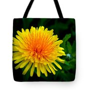 Dandy Among Daisies Tote Bag