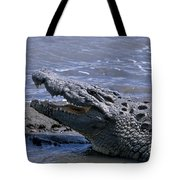 Danger On The Mara River Tote Bag