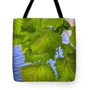 Dangling Leaves Tote Bag by Deborah Benoit