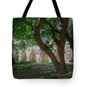 Danish King's Garden  Tallinn Tote Bag