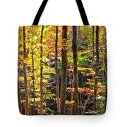Dappled Sun On Fall Colors Tote Bag