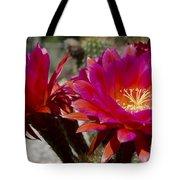 Dark Pink Cactus Flowers Tote Bag