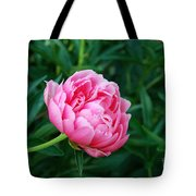 Dark Pink Peony Flower Series 2 Tote Bag