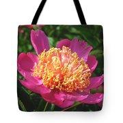 Dark Pink Peony Flower Series 3 Tote Bag