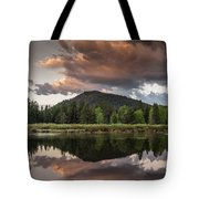 Dawn On The Snake River Tote Bag