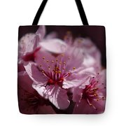 Day Dreaming In Pink Tote Bag