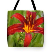 Day Lilly In Diffused Daylight Tote Bag