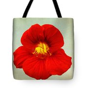 Daylily On Texture Tote Bag
