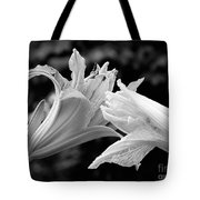 Daylily Study In Bw IIi Tote Bag