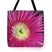 Dazzling Daisy Tote Bag