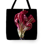 Dead Dried Tulip Tote Bag