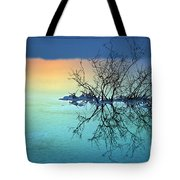 Dead Sea - Withered Bush At Dawn Tote Bag